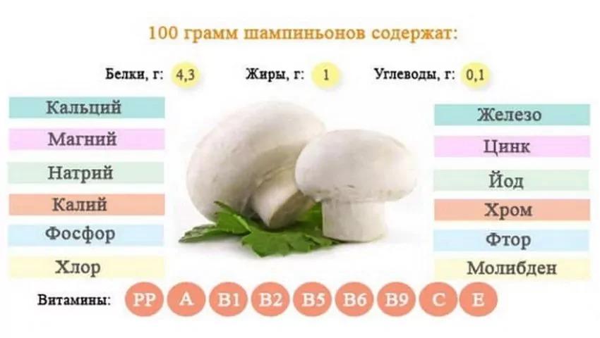 Содержание веществ в 100 г шампиньонов