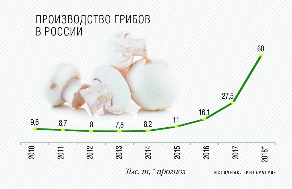Рассмотрим динамику увеличения потребления шампиньона
