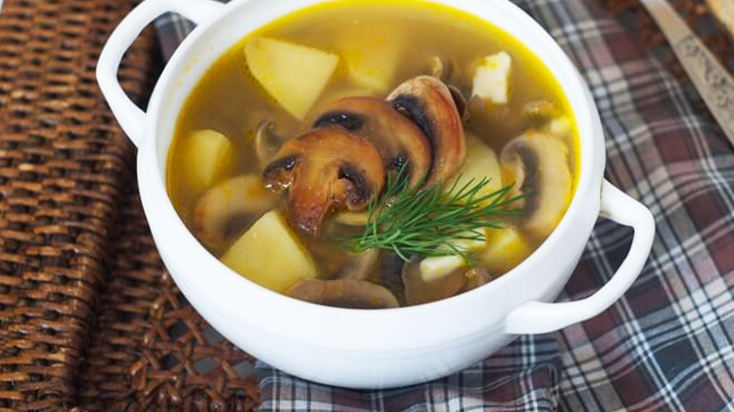 Как приготовить ароматный грибной суп на курином бульоне